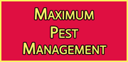 Maximum Pest Management